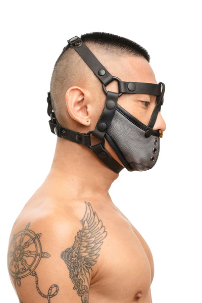 Model wearing black leather head harness and grey muzzle side