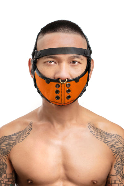 Model wearing black leather head harness and orange muzzle front