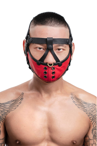 Model wearing black leather head harness and red muzzle front