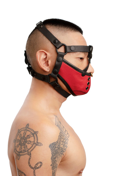 Model wearing black leather head harness and red muzzle side