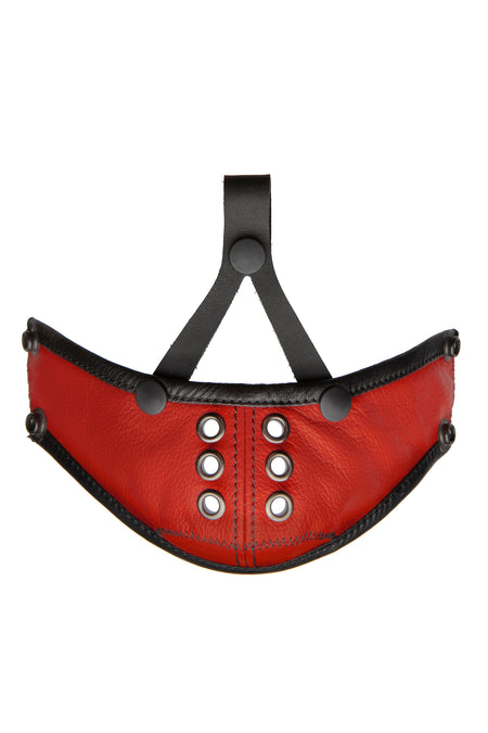 HEAD HARNESS MUZZLE