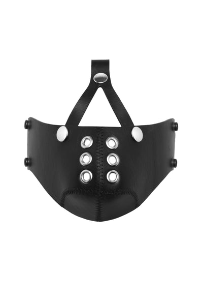 Black leather head harness muzzle, stainless steel hardware