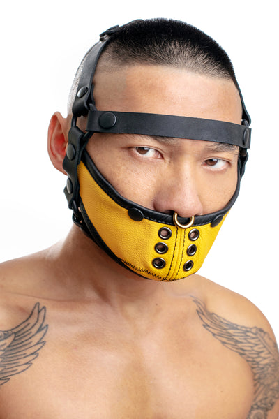 Model wearing black leather head harness and yellow muzzle front