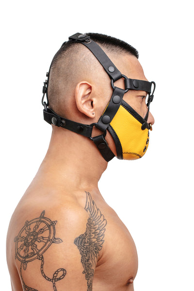 Model wearing black leather head harness and yellow muzzle side