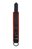 Black and red leather ankle restraints
