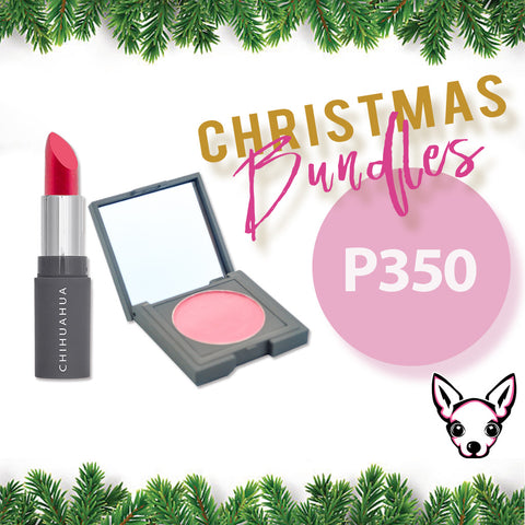Bundle 2: Lipstick + Blush