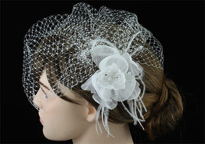 Bridal Wedding Off White Birdcage Netting Veil with Feathers Fascinator Flower XT1566