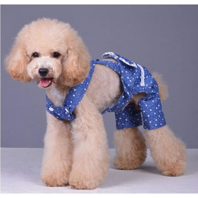Dog Clothe Blue Star - Dog Clothing