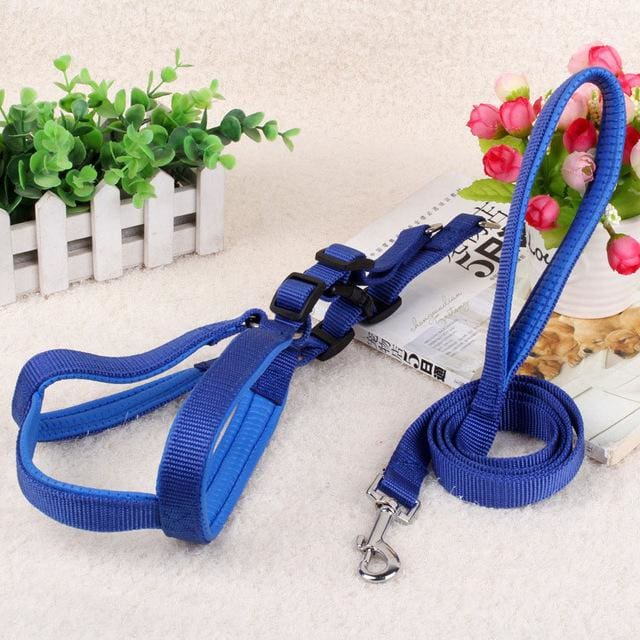 Pet Harness Leash For Medium & Large Dog - Blue / 15mm