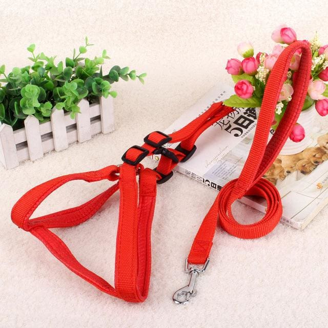 Pet Harness Leash For Medium & Large Dog - Red / 15mm