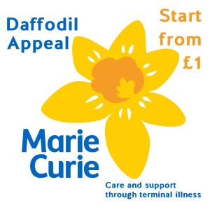 Marie Curie Daffodil Pin Badge Appeal