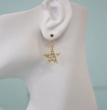 A.V. Max Rhinestone Star Dangle Earrings