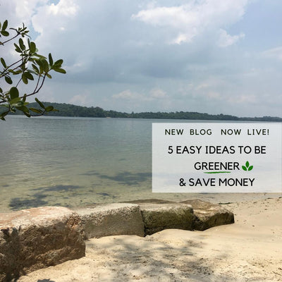 Five easy ideas to be greener and save money!