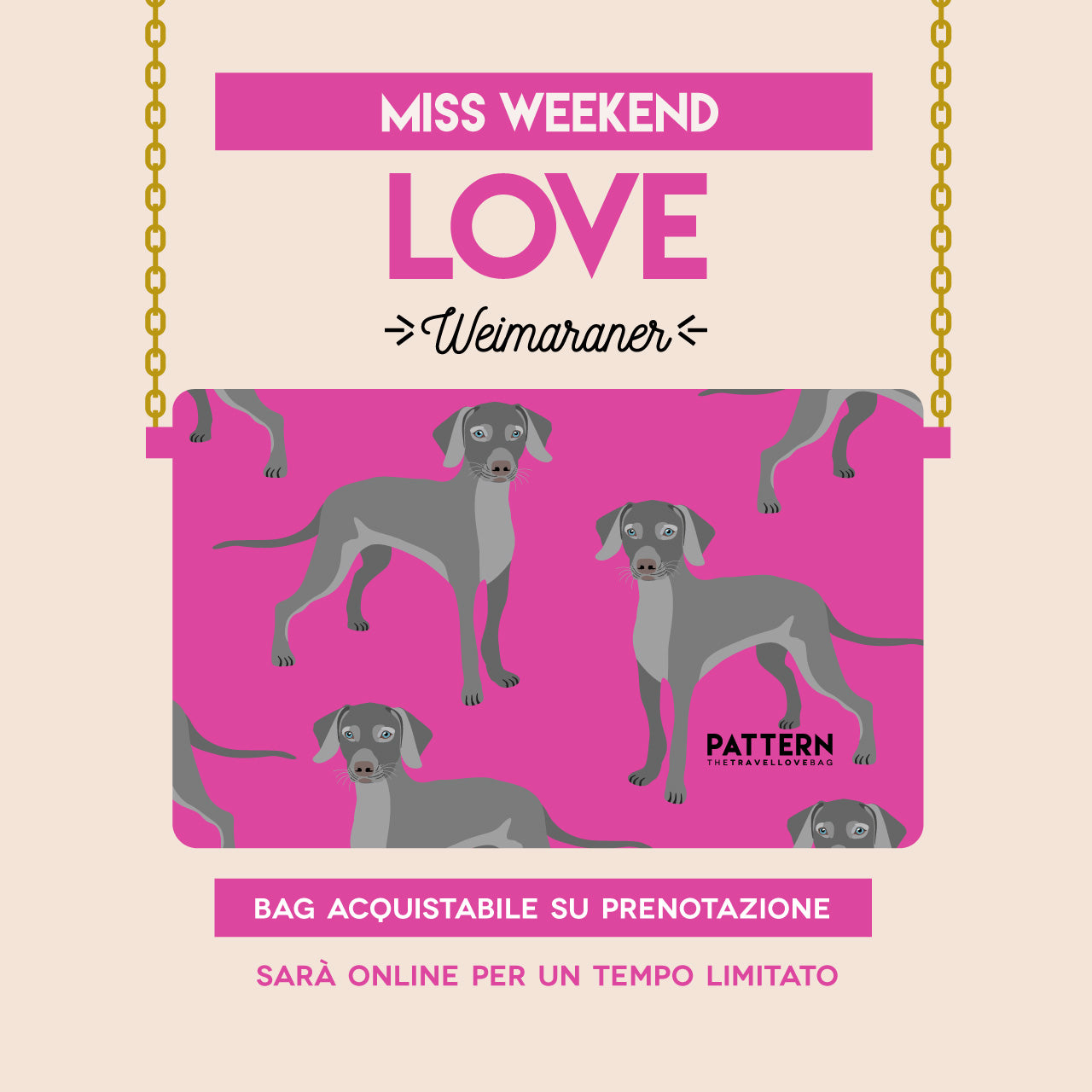 Miss Weekend Weimaraner rosa