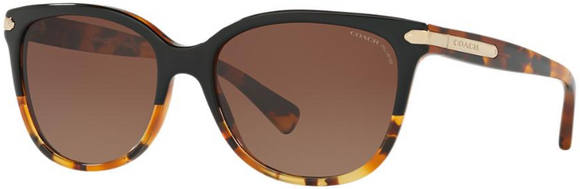 COACH 8132 POLARIZED