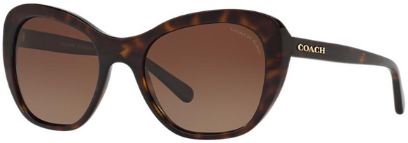 COACH 8204 POLARIZED