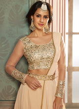 Blush Embroidered Lehenga Style Saree - Lashkaraa
