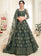 Dark Olive Heavy Embroidered Net Lehenga