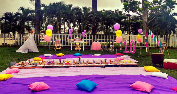 PARTY PICNIC 15 A 20 PERSONAS