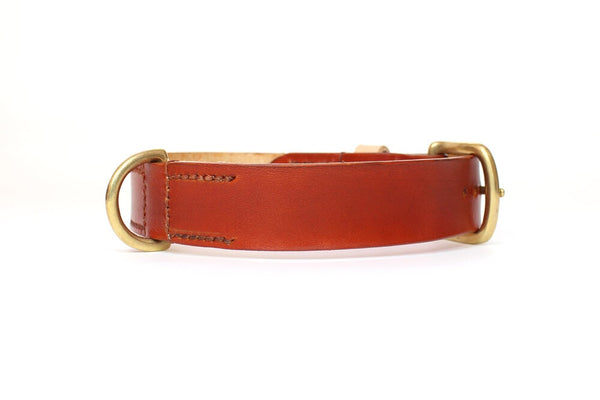 Inugami London British Tan Collar