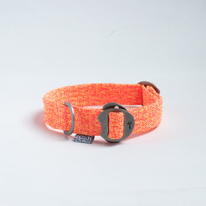Tuglife Early Riser Collar