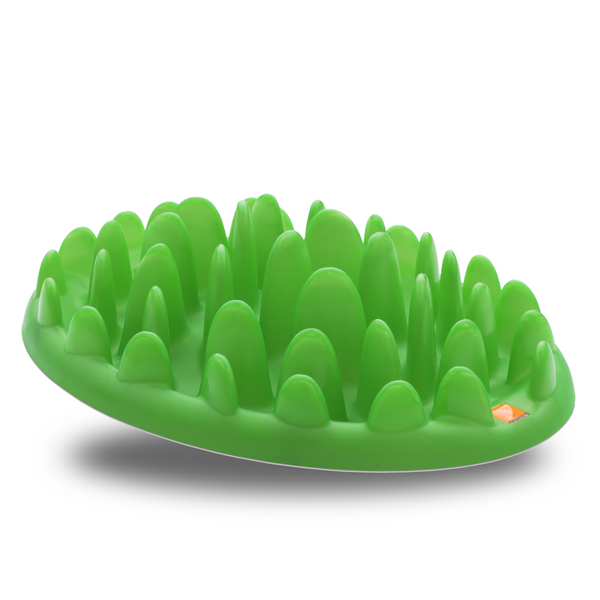 Company of Animals Interactive Green Feeder