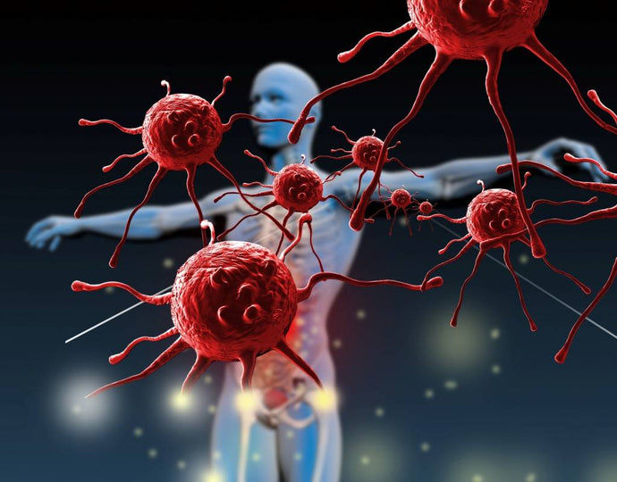 NK cells and your immune system