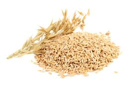 Oat Grain oil unrefined organic oil