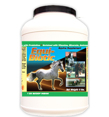Probiotic supplement for Horses