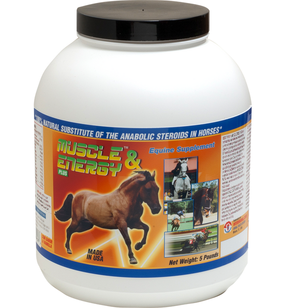Horse Performance & Energy Supplement