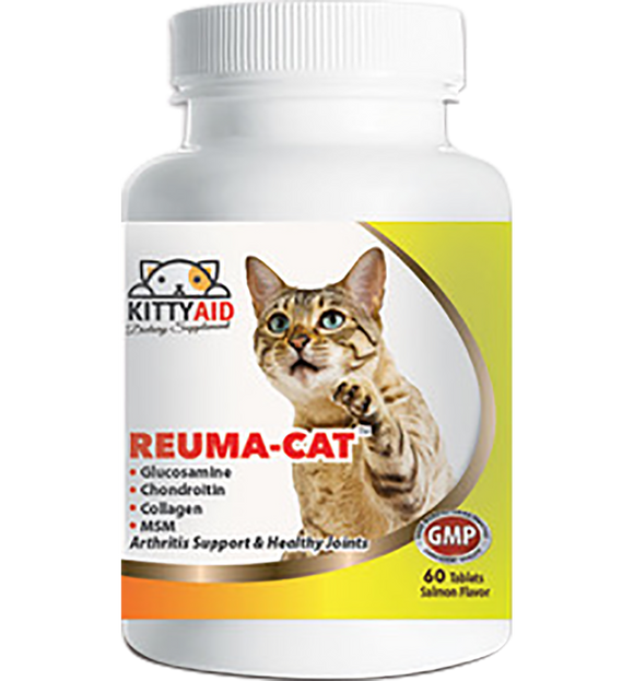 Joint Supplement for Aging Cats- Salmon Flavor