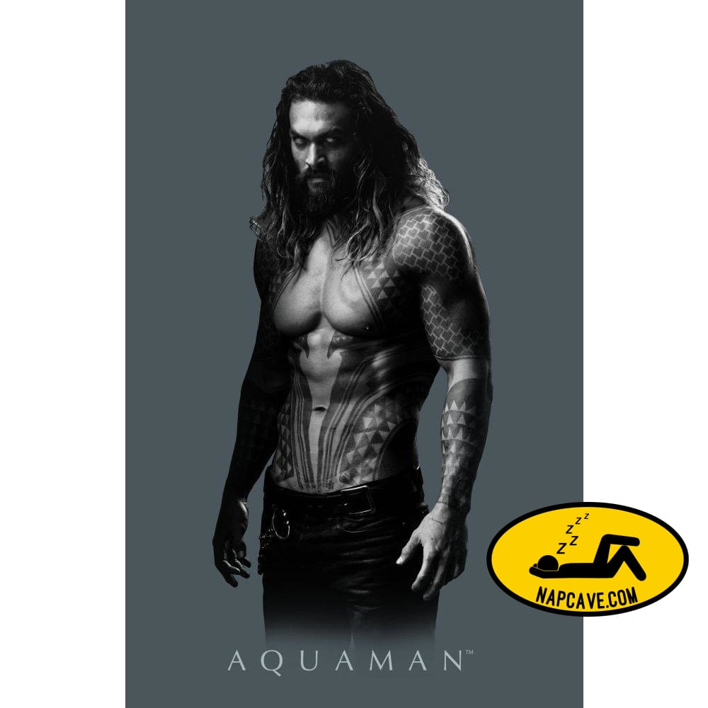 DC Comics Apparel Aquaman Shirt DC Comics Tee Aquaman TShirt Aquaman Gift DC Comics DC Comics Apparel Aquaman Shirt DC Comics Tee Aquaman