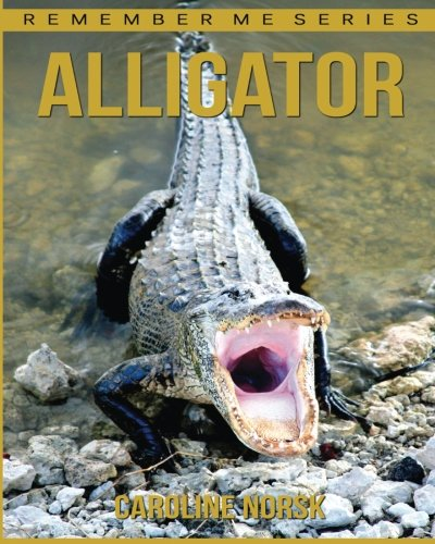Alligator: Amazing Photos & Fun Facts Book About Alligator For Kids (Remember Me Series)