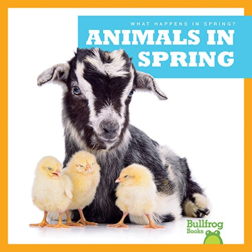 Animals in Spring (Bullfrog Books: What Happens in Spring?)