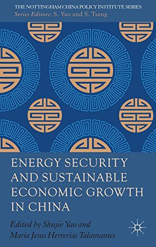 Energy Security and Sustainable Economic Growth in China (The Nottingham China Policy Institute Series)