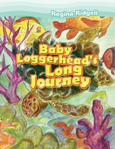 Baby Loggerhead's Long Journey