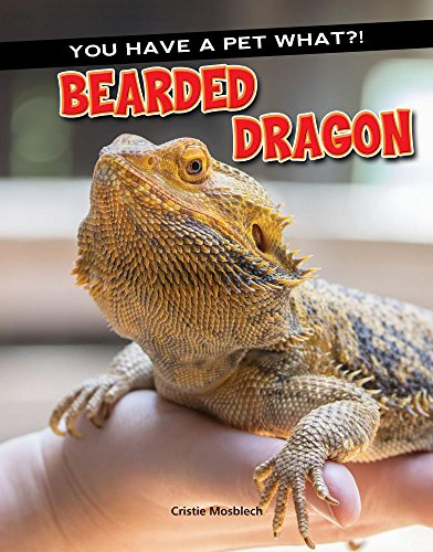 Bearded Dragon (You Have a Pet What?)