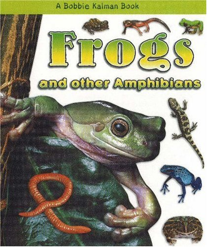 Frogs and Other Amphibians (What Kind of Animal Is It?)