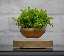 Load image into Gallery viewer, Levitating Plant Pot