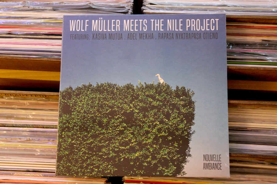 Wolf Muller Meets The Nile Project - S/T