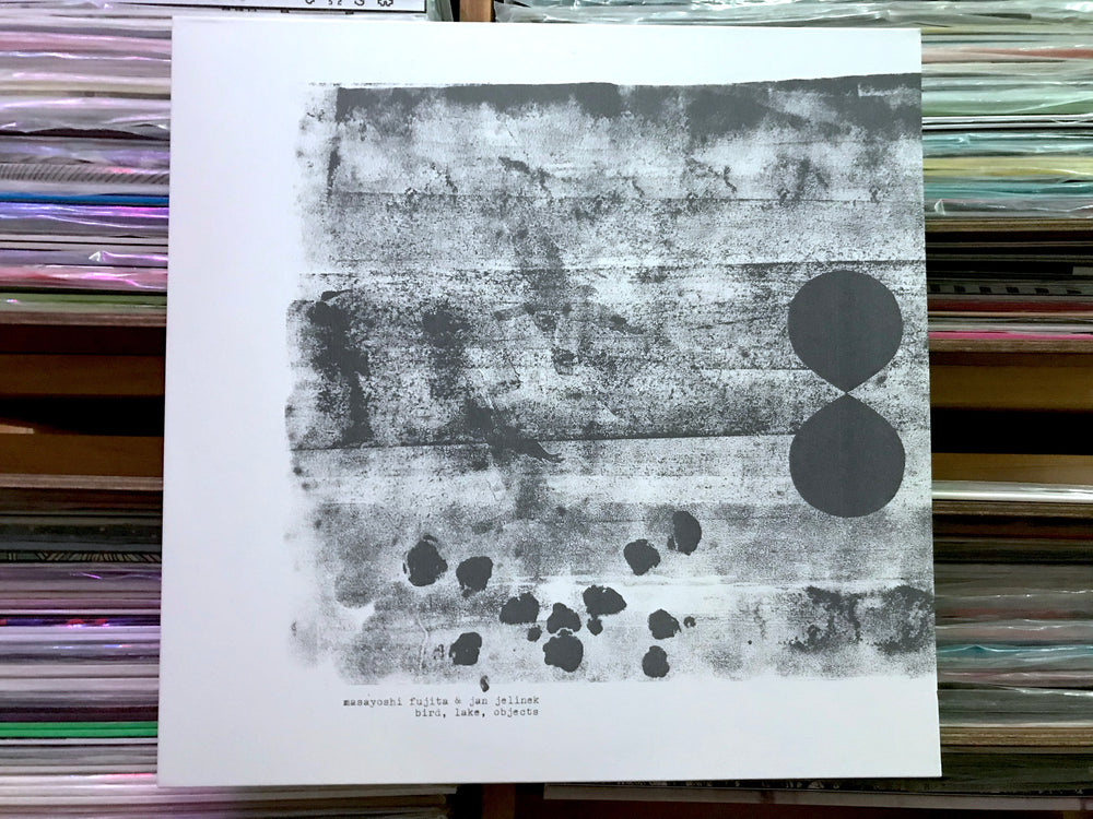 Masayoshi Fujita & Jan Jelinek ‎– Bird, Lake, Objects