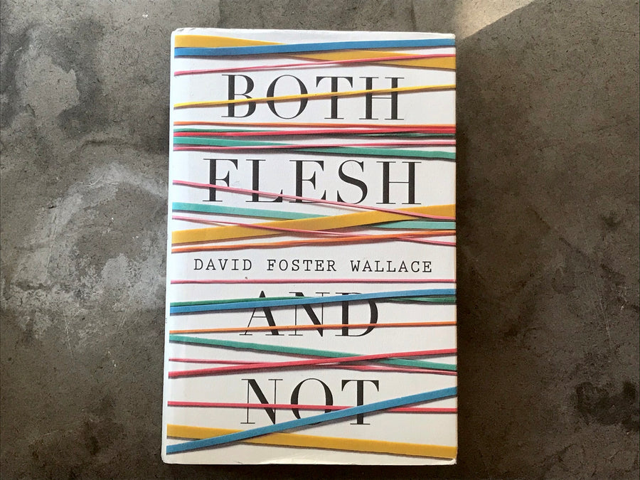 David Foster Wallace - Both Flesh and Not
