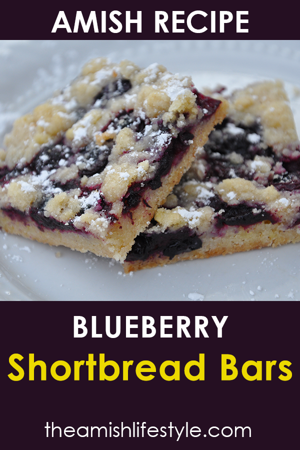 Amish Blueberry Shortbread Bars