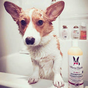 Warren London 2-in-1 Dog Shampoo & Conditioner | Pawlicious & Company