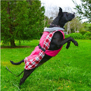 Alpine All-Weather Dog Coat - Raspberry Plaid | Pawlicious & Company