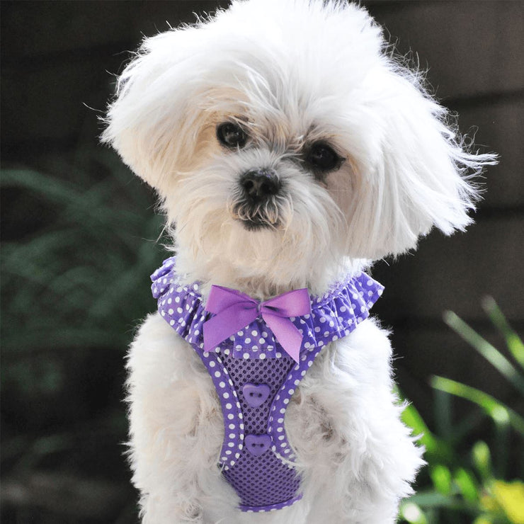 American River Choke Free Dog Harness in Paisley Purple Polka Dot | Pawlicious & Company