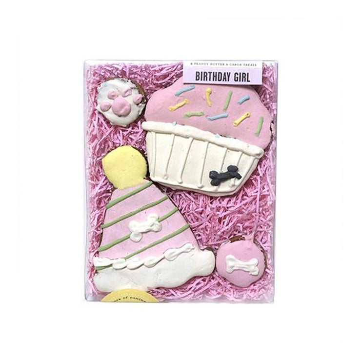 Birthday Girl Dog Treat Box 2 | Pawlicious & Company