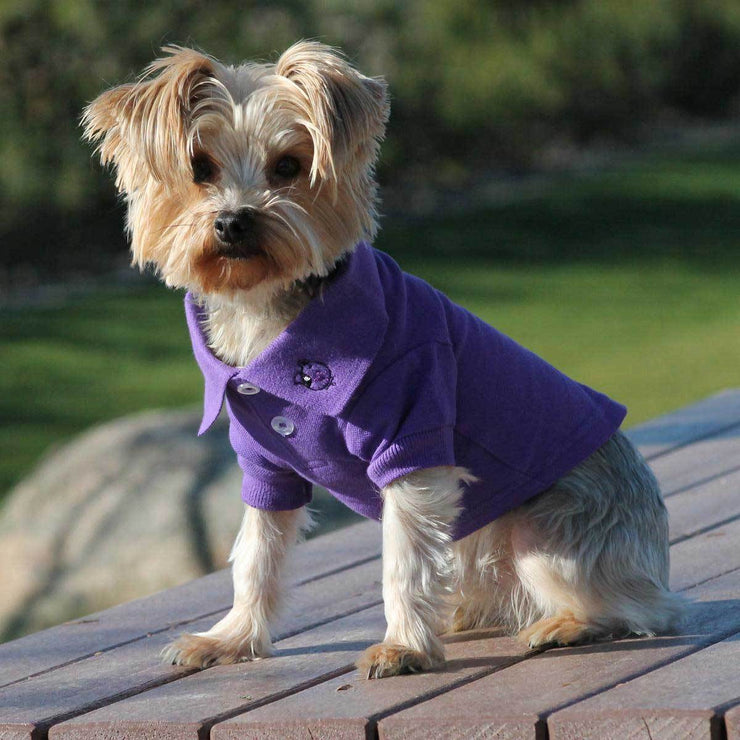100% Cotton Polo Shirts in Violet | Pawlicious & Company
