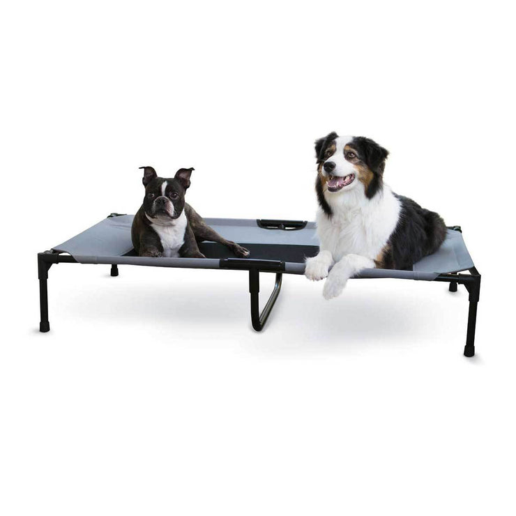 Double Gray Dog Cot | Pawlicious & Company