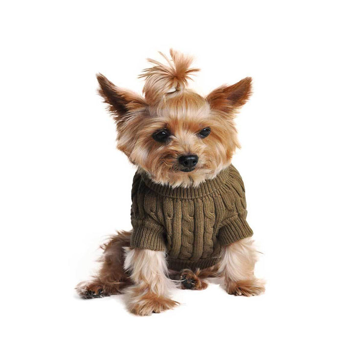 Herb Green Cable Knit Dog Sweater | Pawlicious & Company